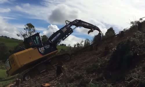 modern tree cutting machine most amazing forestry equipment compilation in the world