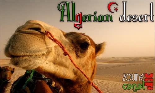 اجمل اغنية صحراوية جزائرية (ya salam) يا سلام .