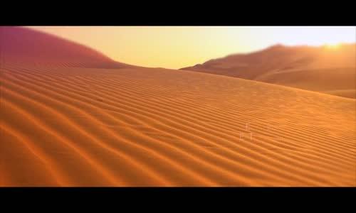 فيديو عالمي سيغير النظرة السلبية للسياح الاجانب عن صحراء الجزائر