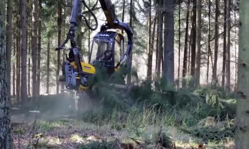 آلة عجيبة لتقطيع الأشجار و الأخشاب