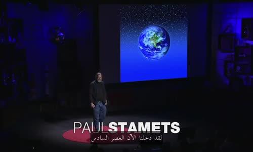 ستة طرق يمكن للفطر انقاذ العالم بها _ مترجم