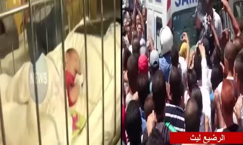 الشيخ علي بن حاج _ الرضيع ليث