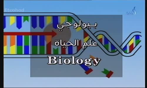 تاريخ الحضارة د أحمد داوود الحلقة 31 من 42-ج-2 السلسلة الرئعة النادرة