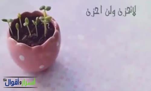 لاتحزن فيديو يستحق المشاهدة  - بكلمات وسيم يوسف -
