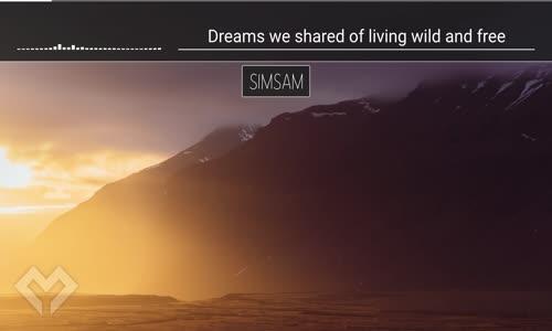 [LYRICS] SimSam  Not That Young