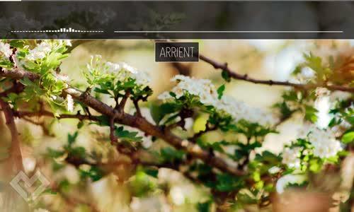 LYRICS Arrient  Fall Into Me (ft. Evoke) Foria Remix