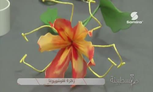 زهرة قلوغويوغا حصة قسطبينة  