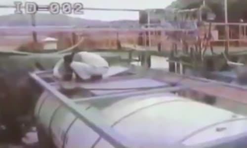 Hydrogen fluoride gas leak kills five
