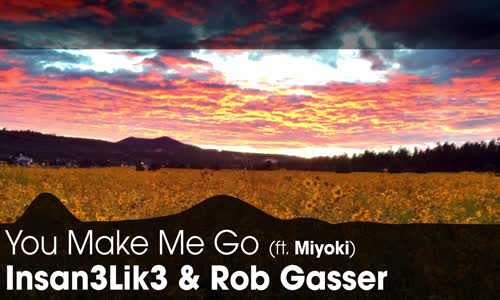 LYRICS Insan3Lik3 & Rob Gasser  You Make Me Go (ft. Miyoki)