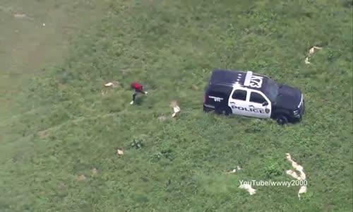 Extraordinaire course poursuite policiereاروع المطاردات البوليسية(3)