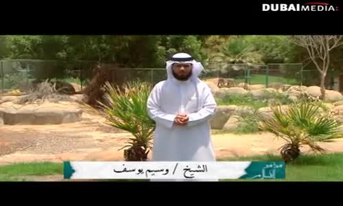 هذا هو الإسلام 3 - الحلقة 15 - الحيوانات - الشيخ وسيم يوسف