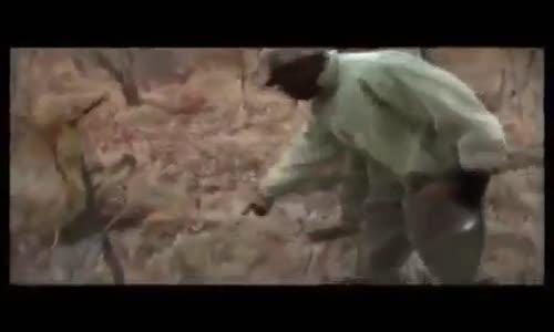 نمر يعض صيادا يصيبه بعدة جروح chasse du Léopold
