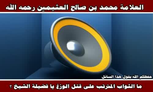 ما الثواب المترتب على قتل الوزغ - الشيخ محمد بن صالح العثيمين 