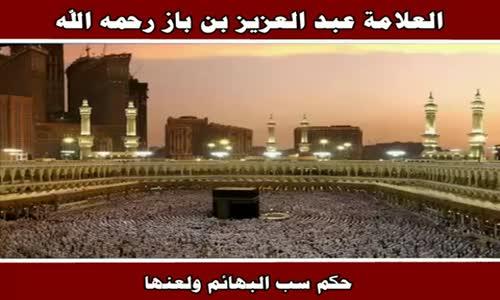 حكم سب البهائم ولعنها - الشيخ عبد العزيز بن باز 