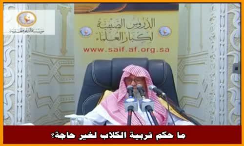 ما حكم تربية الكلاب لغير حاجة؟ - الشيخ صالح الفوزان 