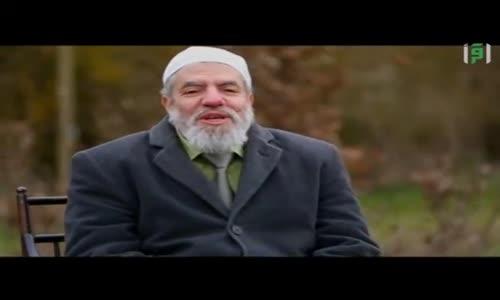 في نور الإسلام - أنوار النبوة المحمدية  - الدكتور إبراهيم العشري