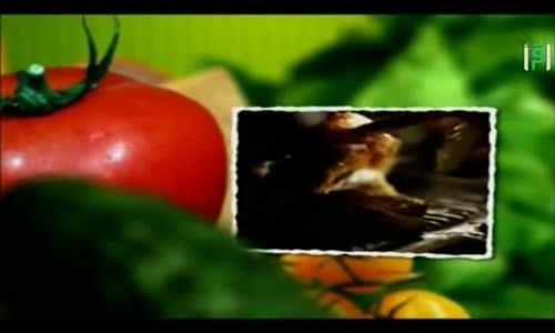 برنامج مطبخك - رمضان 2014 - حلقة كواليس البرنامج