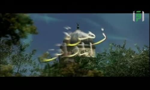 زهرة المدائن  - باب الخليل - الدكتور ناجح بكيرات - الأقصى