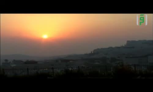 كيف بدأت إسرائيل عملية الإستيطان وما هي مقولة هت سل الشهيرة في هذه العملية  -زهرة المدائن - الأقصى