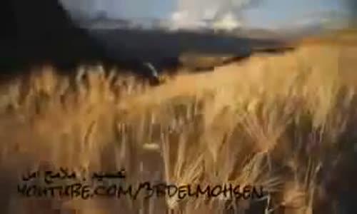 الصبر على البلاء - الشيخ عبدالمحسن الأحمد