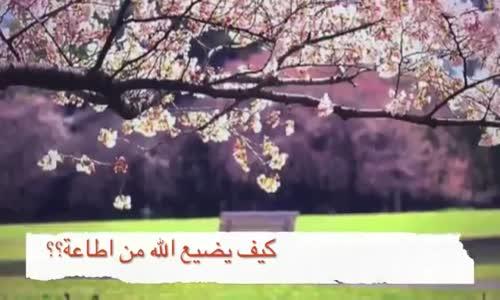كيف يضيع الله من اطاعه !! كلام مؤثر للشيخ محمد الشنقيطي