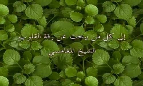 نصيحة من الشيخ المغامسي لكل من يرد رقة القلوب