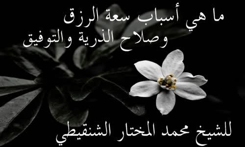 أسباب سعة الرزق وصلاح الذرية والتوفيق للشيخ محمد المختار الشنقيطي
