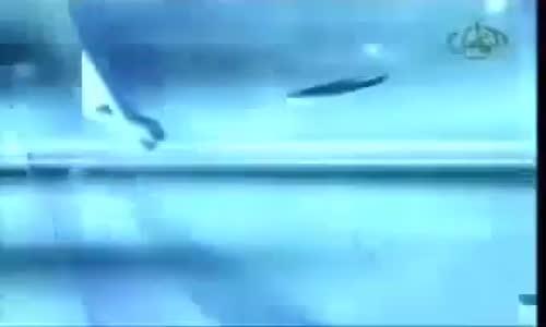 2 - الاعجاز العددي ظواهر رقمية