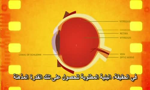 تقنيات مذهلة كيف تعمل العين البشرية  سبحان الخالق بديع السماوات والارض
