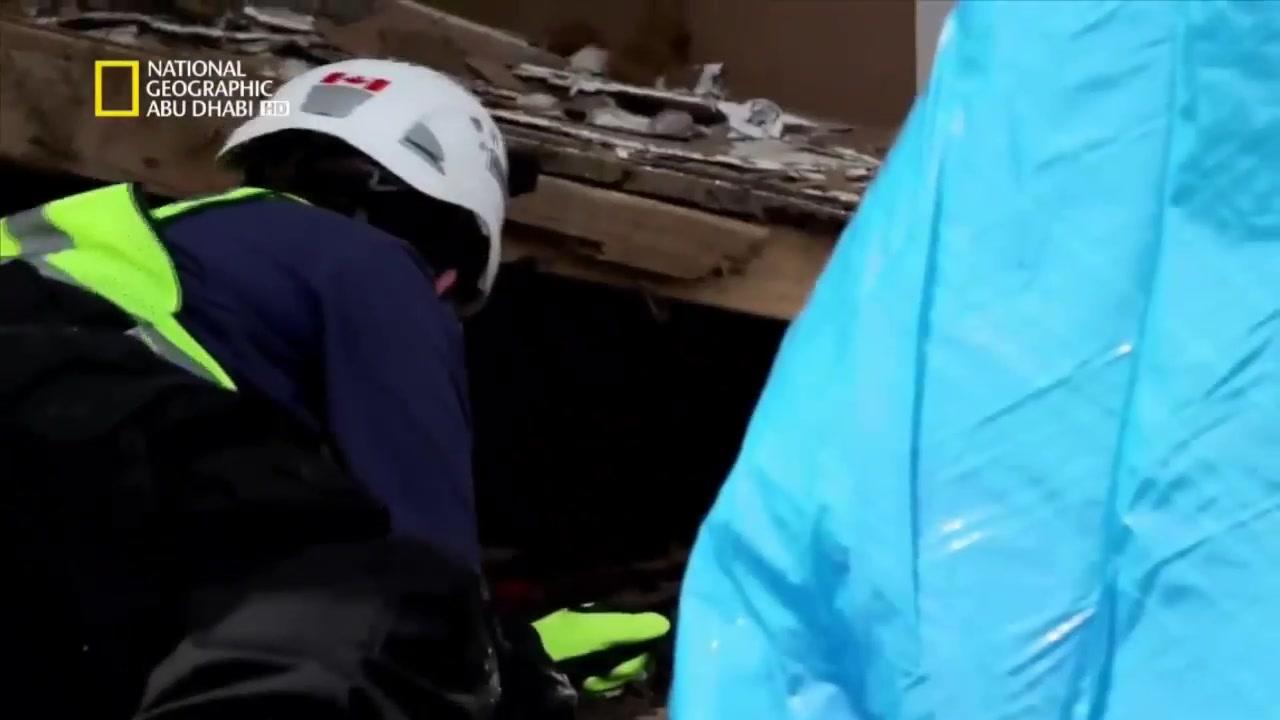 وثائقي فريق إنقاذ القطط