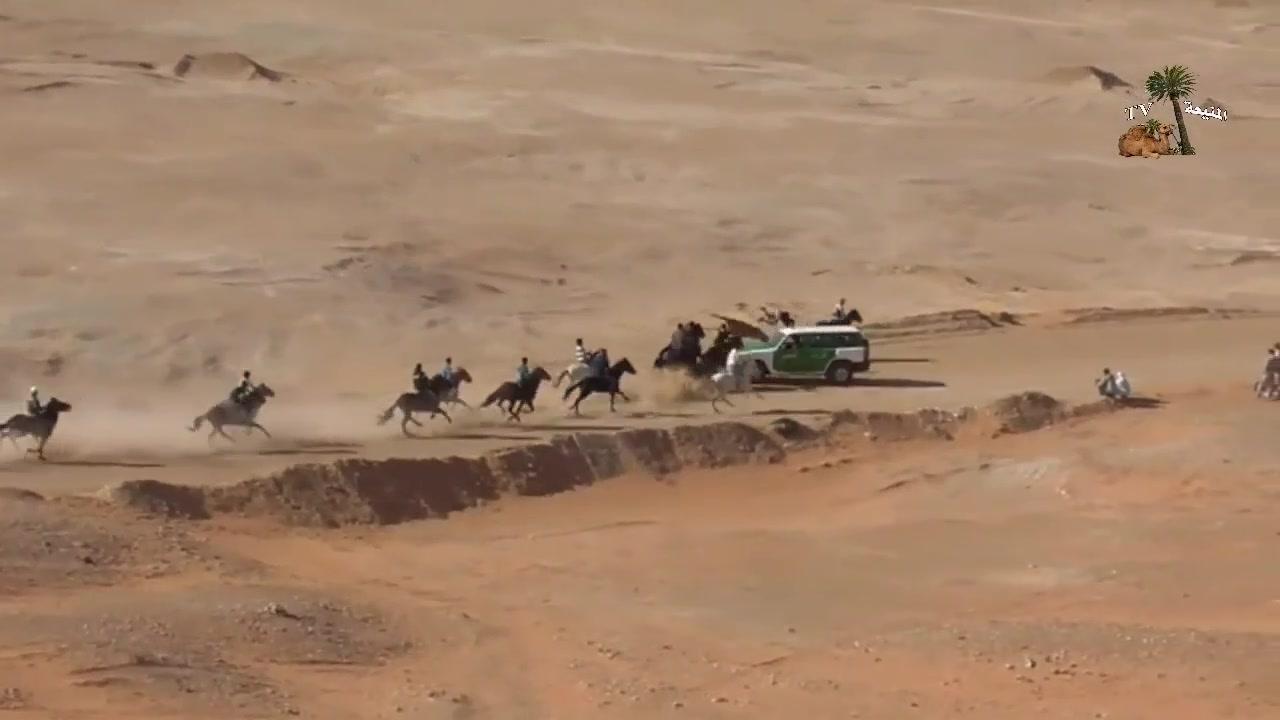 إصطدام عنيف سيارة الدرك الوطني مع مجموعة من الخيول فيديو كامل
