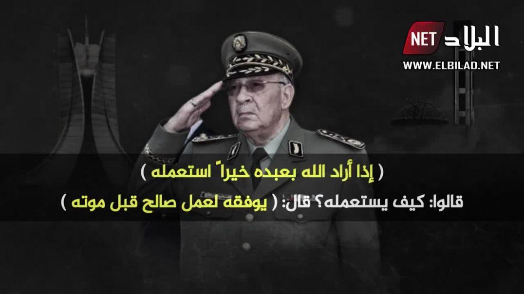 هذه هي اللحظات التي جعلت الجزائريون يحبون ويحترمون احمد قايد صالح