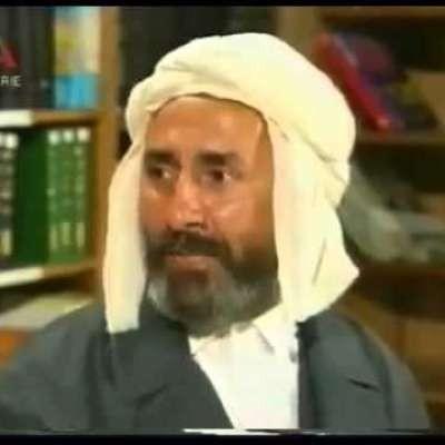 أخبار الجزائر