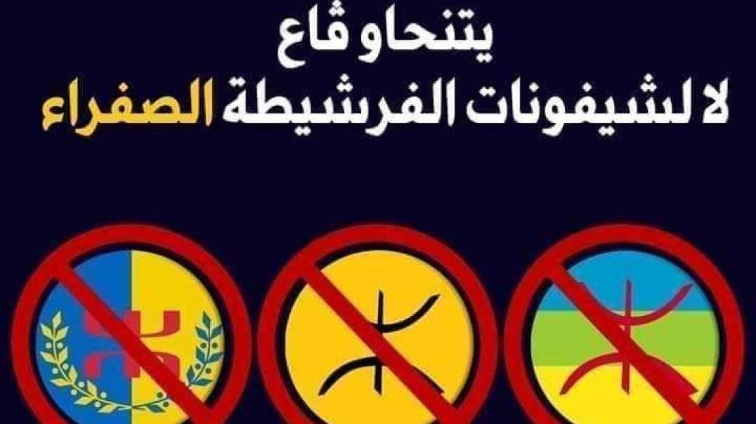هل ستقتدي الجزائر بقانون الكراهية الذي أصدرته مؤخّرا جنوب إفريقيا بمنع كل الرّايات العرقية والعنصرية