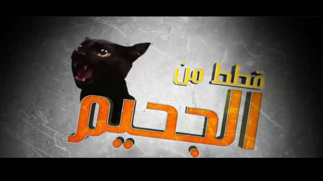 قطط من الجحيم الحلقة 2