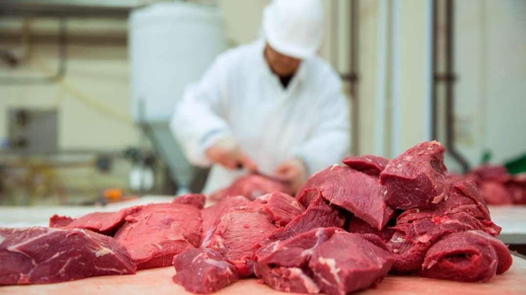 مصنع المأكولات: شرائح اللحم والأضلاع2021